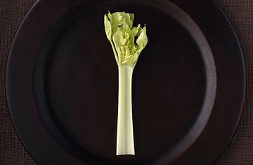 360_vegetarian_0402.jpg