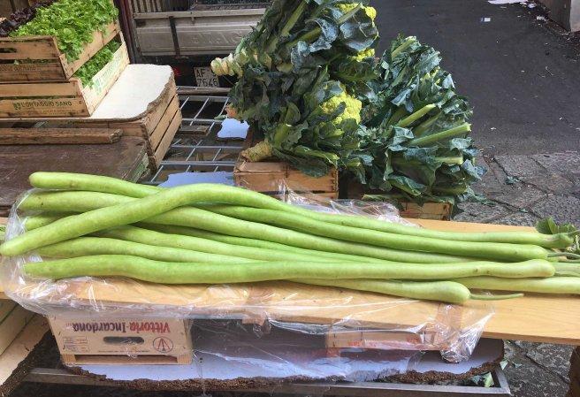 long zucchini.jpg