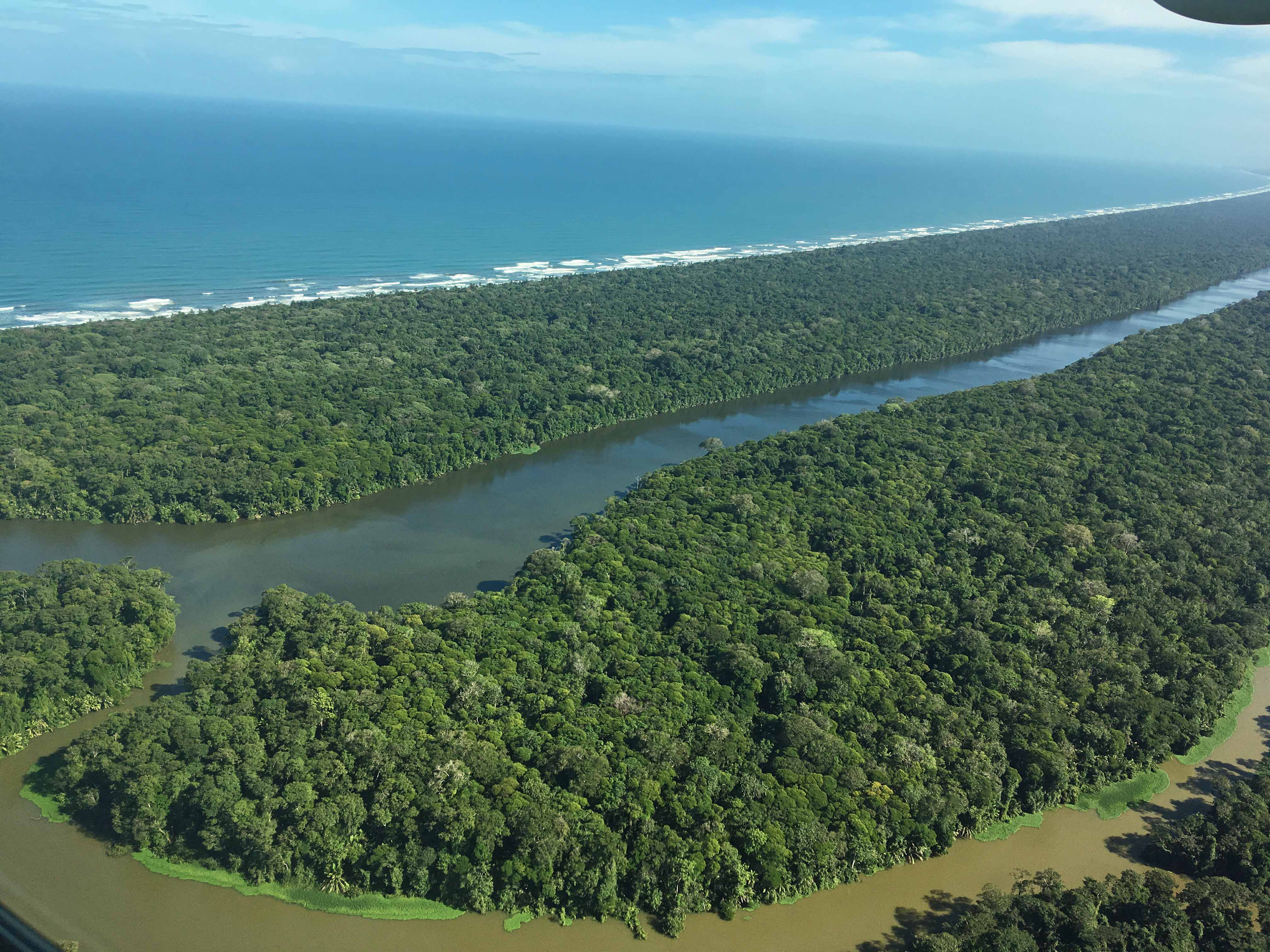 tortuguero from air.jpg